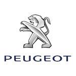 Lederen-Interieur-Peugeot