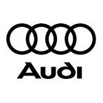 Lederen Interieur Audi